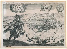 220-The siege and conquest of the town of Regensburg on the Danube by His Grace Duke Bernhard of Weimar, which took place at the beginning of winter months in 1633.